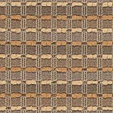 Sierra Decorator Fabric by Robert Allen