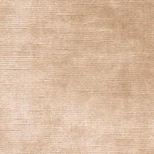 Antelope Solid Decorator Fabric by Fabricut