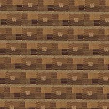 Briar Decorator Fabric by Robert Allen