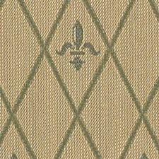 Pear Decorator Fabric by Robert Allen /Duralee