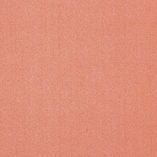 Coral Solid Decorator Fabric by Vervain