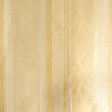 Amber Stripes Decorator Fabric by Vervain
