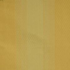Pistachio Stripes Decorator Fabric by Trend