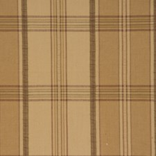 Ginger Check Decorator Fabric by Trend