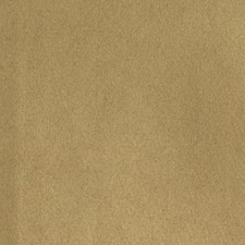 Latte Solid Decorator Fabric by S. Harris