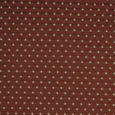 Brown Eyes Decorator Fabric by RM Coco