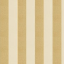 Gold Stripes Decorator Fabric by Fabricut