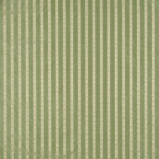 Antique Green/Beige Decorator Fabric by Scalamandre