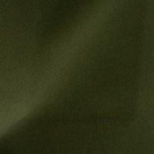 Marsh Green Decorator Fabric by Duralee