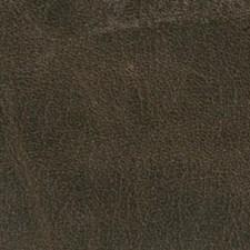 Raisin Decorator Fabric by Duralee