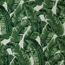 Jungle Decorator Fabric by Sunbrella