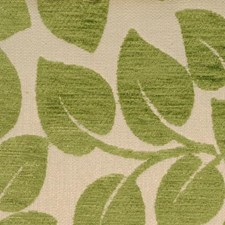 Mint Leaf Decorator Fabric by Duralee