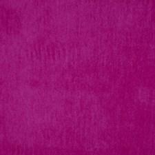 Begonia Decorator Fabric by Robert Allen