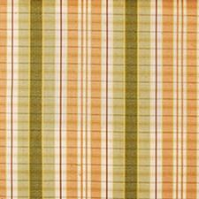 Papaya/sage Decorator Fabric by Duralee