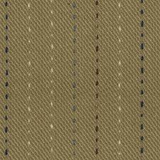 Stone Decorator Fabric by Robert Allen /Duralee