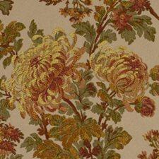 Paprika Bk Decorator Fabric by Robert Allen