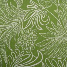 Lime Decorator Fabric by Duralee