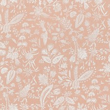 Blush Print Decorator Fabric by Scalamandre