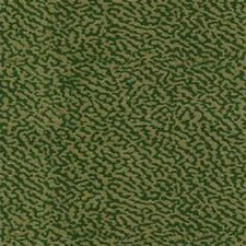 Green/Beige Solid W Decorator Fabric by Kravet
