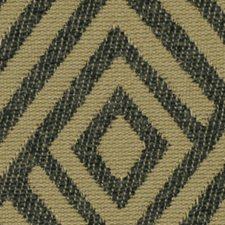 Safari Decorator Fabric by Robert Allen