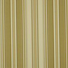 Teastain Decorator Fabric by Robert Allen