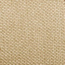 Champagne Decorator Fabric by Highland Court