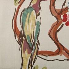 Multi Decorator Fabric by Highland Court
