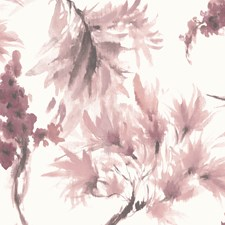 Pink Stucco Decorator Fabric by Maxwell