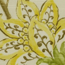 Spring Decorator Fabric by Robert Allen/Duralee