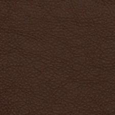 Raisin Decorator Fabric by Robert Allen /Duralee