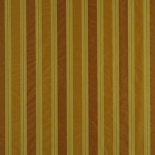 Mango Decorator Fabric by Robert Allen /Duralee