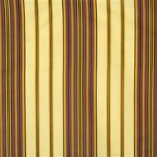 Mimosa Stripes Decorator Fabric by Lee Jofa