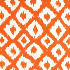 Clementine Outdoor Decorator Fabric by Lee Jofa