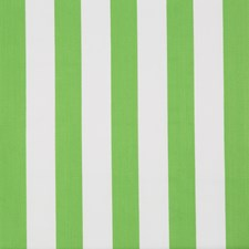 Palm Green Stripes Decorator Fabric by Lee Jofa