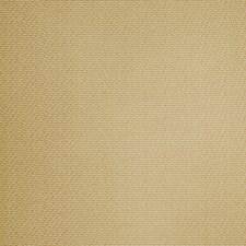 Golden Texture Plain Decorator Fabric by Fabricut