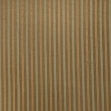 Garden Stripes Decorator Fabric by Fabricut