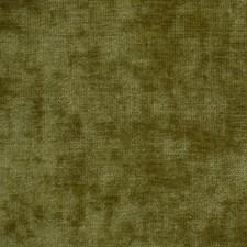 Leek Decorator Fabric by Robert Allen /Duralee