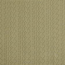 209484 Speckles by Robert Allen