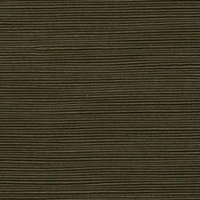Havana Decorator Fabric by Robert Allen /Duralee