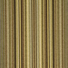 Goldenrod Decorator Fabric by Robert Allen /Duralee