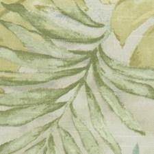 Aloe Decorator Fabric by Robert Allen