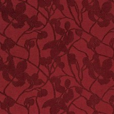Terra C Solid W Decorator Fabric by Groundworks