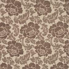 Kakao-Ekru Decorator Fabric by RM Coco
