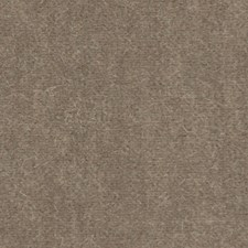 Brownstone Decorator Fabric by Beacon Hill