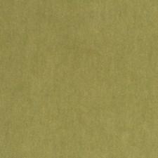 Boxwood Decorator Fabric by Robert Allen/Duralee