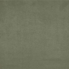 Dill Solids Decorator Fabric by Kravet