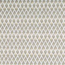 Pewter Decorator Fabric by Robert Allen