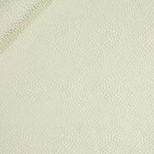 Cream Decorator Fabric by Robert Allen