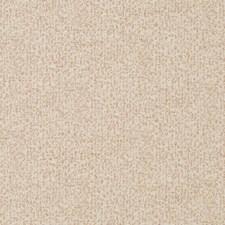 Blush Decorator Fabric by Robert Allen/Duralee
