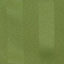 Stem Solid Decorator Fabric by Fabricut